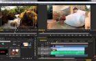Curso extra-curricular Curso Básico de Edición Digital en Adobe Premiere